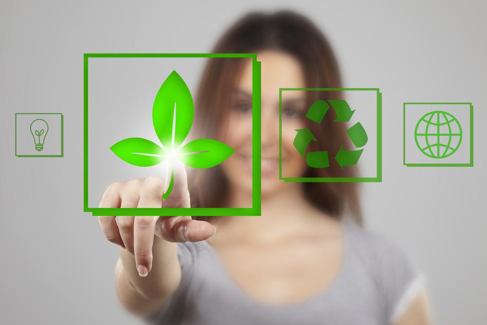 Zöld vállalkozás